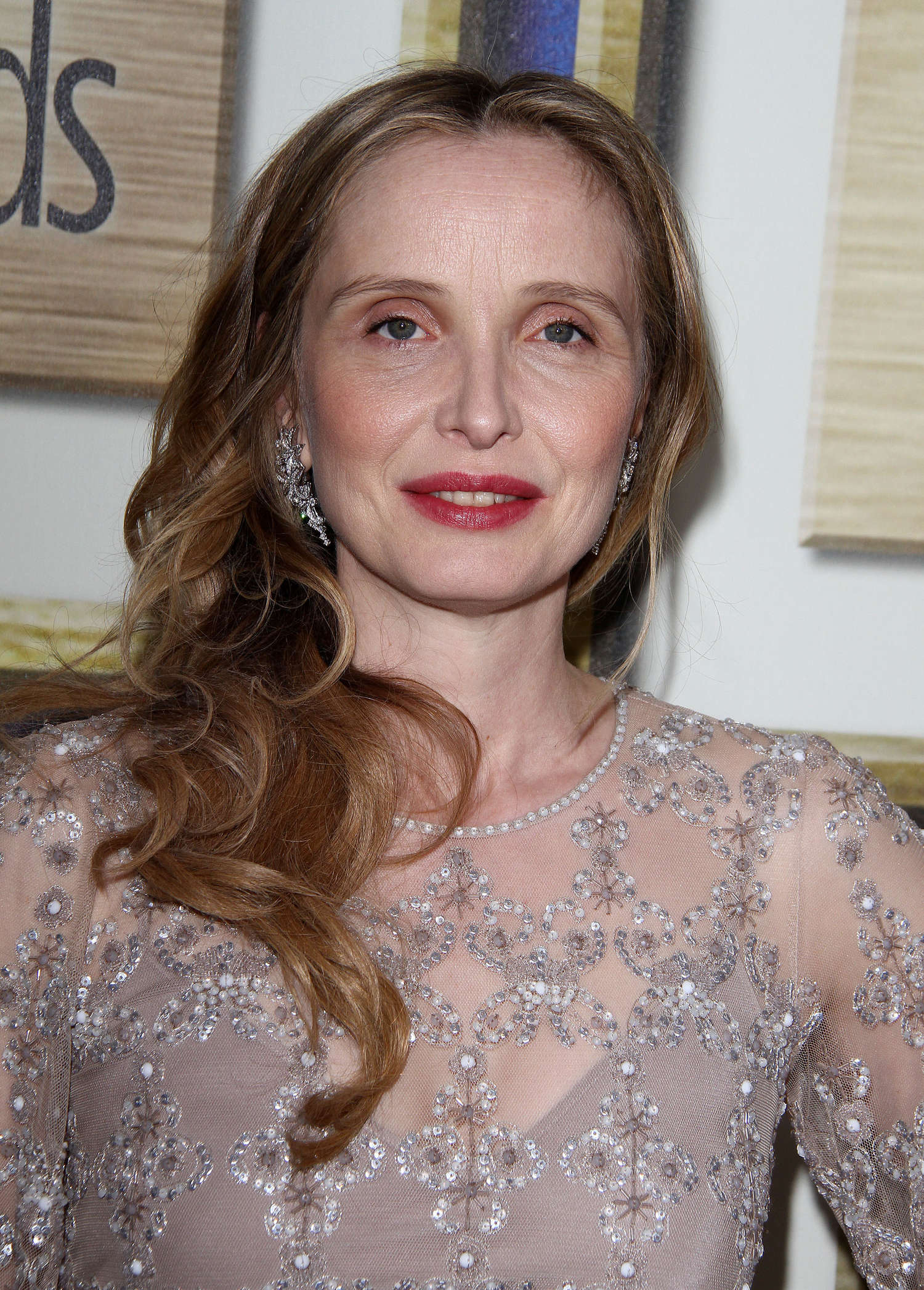 Julie-Delpy---2014-Writers-Guild-East-Coast-Ceremony--01