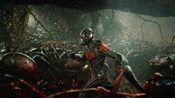 antman-ants-Featured-582x327