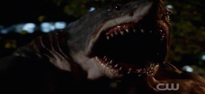 king-shark-851-157034